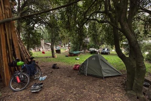 Bajo un inmenso árbol monto la tienda de campaña para protejerme lo mejor posible de la lluvia.