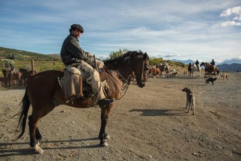 Guardando el ganado en el terreno. Camino a Cholila me entretengo hablamdo con la gente que me voy encontrando en el camino.