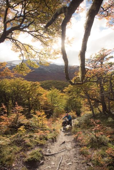 Peter empuja su bicicleta por los bosques de los Andes camino de Argentina.