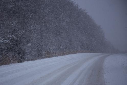 Nieva, nieva y nieva... y el viento no cesa de luchar contra mi.