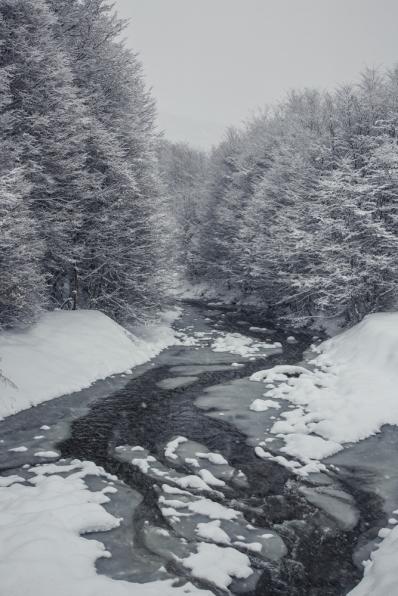 La nieve tiene el encanto de  pintar los paisaje y convertirlos en algo mágico...