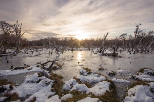 Las temperaturas son muy bajas en esta época y todo está congelado. No hay mal que por foto no venga.