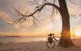 A pesar de su color marrón el río de la Plata luce como un pequeño paraíso al atardecer