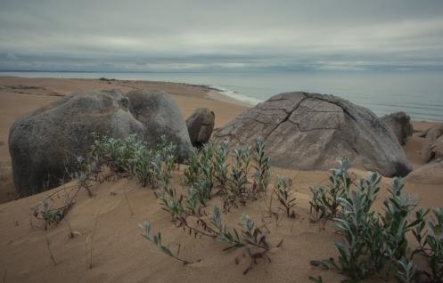 Subiendo a la duna Bellavista se puede ver el esqueleto de que un día fue una montaña de piedras.