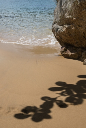 Detalle de una playa en Ilha Grande.