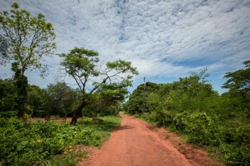 Camino de tierra roja que lleva a Chochis.