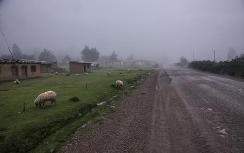 Como si de un pueblo asturiano se tratara atravieso éstas aldeas que viven bajo la niebla.