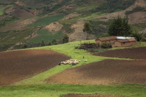 Valles rurales en el viejo camino a Cochabamba.