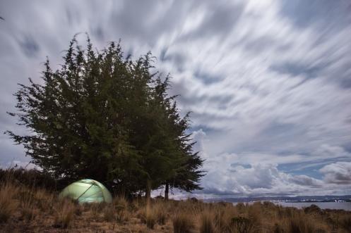 Monto mi campamento bajo la protección de un árbol.
