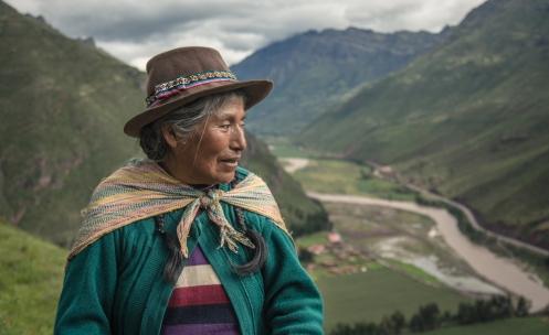 Esta mamita recoge hiervas en las laderas del Valle Sagrado a última hora de la tarde.