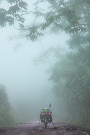 La humedad y la niebla son los elementos predominantes en esta zona de la selva que asciende a los 1200 msnm