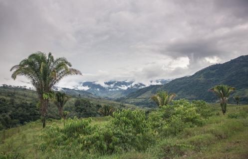 Al fondo veo lo que serán las últimas montañas antes de encontrarme con la extensa selva baja por donde transcurre el amazonas.