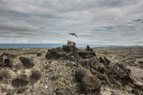 Paseando en el desierto de la Tatacoa por su parte más oriental.