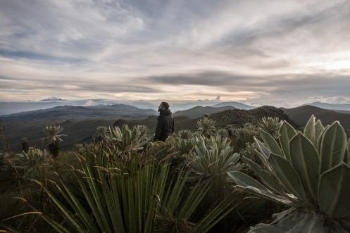 Me despido de Ecuador desde lo más alto, en la Reserva Natural de El Angel.