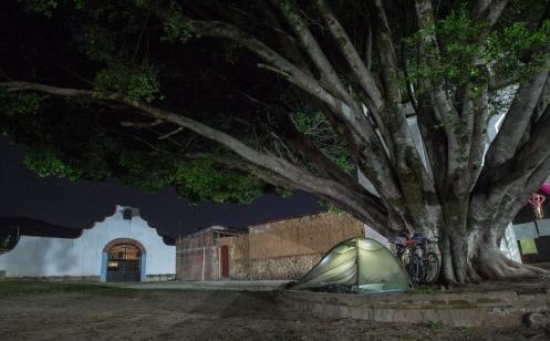 Hoy duermo frente a la iglesia de un pequeño pueblo, bajo un inmenso arbol.