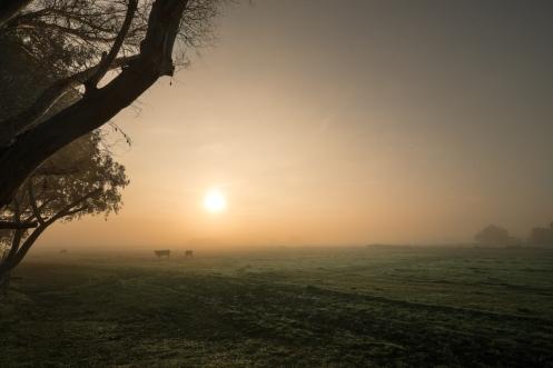 Nos despertamos en casa de Juan tras una noche muy húmeda con una espesa niebla.