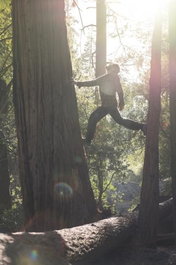 Caminando entre los bosques la luz nos regala grandes momentos, y Bea sabe captarlños con la cámara. Foto: Beatriz Pardo.