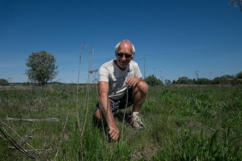 Salimos a recoger unos espárragos trigueros que crecen en el campo cercano a casa de Ron.