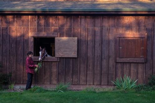 Bea disfruta ayudando a Julie en el cuidado de los caballos durante estos días.