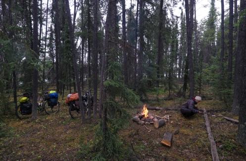 Los arboles son nuestro abrigo para la lluvia, el fuego calor para secar nuestros huesos y los ríos y lagos la despensa donde pescamos la cena. Nuestro instinto florece como el musgo de los bosques, con dirección al norte.