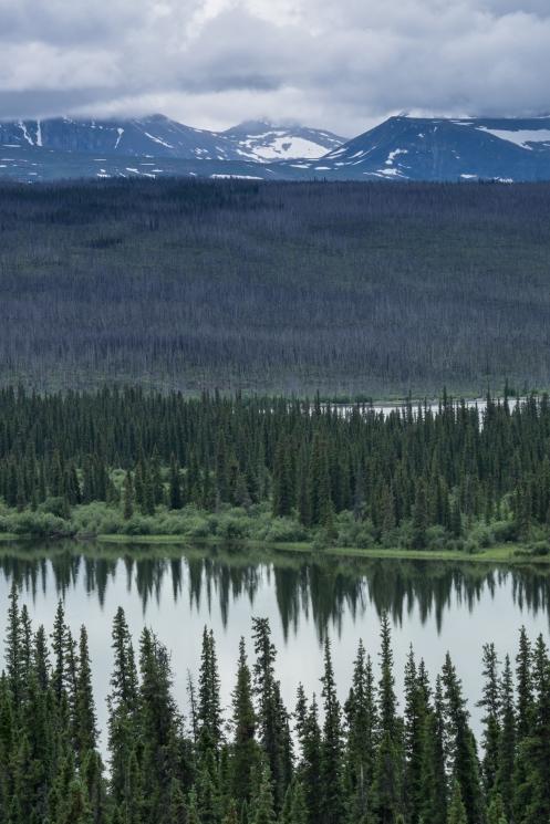Lagunas, bosques y montañas como capa superior. Dentro osos, lobos, alces, ciervos, castores y millones de pájaros entre otros habitan estas tierras.