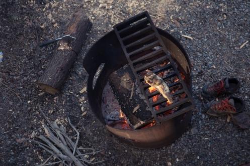 Una a una vamos asando las truchas al fuego.