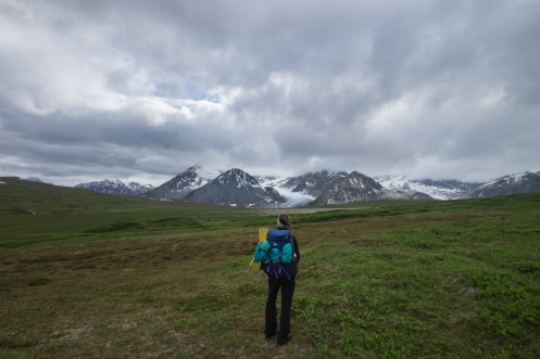Despues de unas horas de caminata alcanzamos la primera vista del Samuel Glaciar.