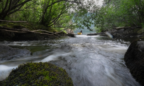 Reportando agua fresca en los arroyos que desembocan en el Yukon.