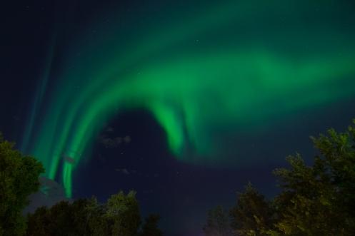 Esta aurora boreal salía justo encima de nuestra tienda de campaña en el jardín del Hostel...